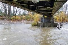 ToltHawk under walking/train bridge