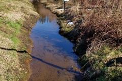 ToltHawk over Creek